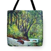 Descenso Turbulento Tote Bag