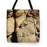 Desert Face 2 Tote Bag