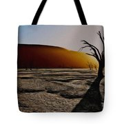 Desert Floor Tote Bag