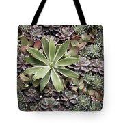 Desert Flora Tote Bag