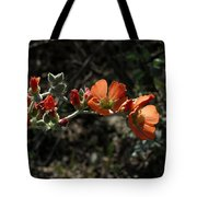 Desert Globemallow Tote Bag