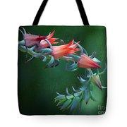 Desert Grace - Echeveria Tote Bag