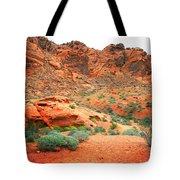 Desert Hiking Among The Sandstones Tote Bag