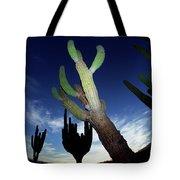 Desert Landscape Tote Bag