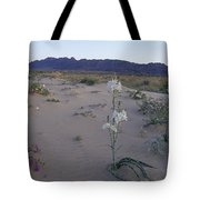 Desert Lily Sancturay Tote Bag