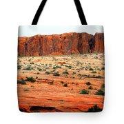 Desert Monolith Tote Bag