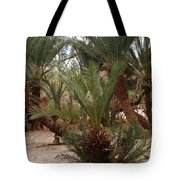 Desert Oase Camp Sinai Egypt Tote Bag