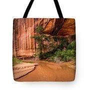Desert Oasis - Coyote Gulch - Utah Tote Bag