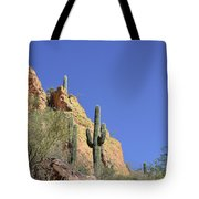 Desert Plants Of The Superstitions Tote Bag