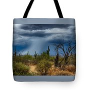 Desert Rains  Tote Bag