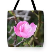 Desert Rose II Tote Bag