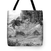 Desert Snowstorm Black And White Tote Bag