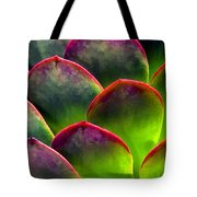 Desert Succulent In Bright Sun And Shade Tote Bag