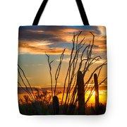 Desert Sunset Tote Bag