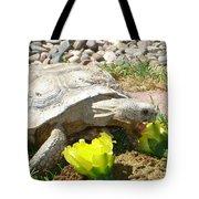 Desert Tortoise Delight Tote Bag