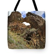 Desert Wildflowers Grand Arch  Tote Bag