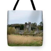 Desmond Castle Views Tote Bag