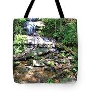 Desoto Falls Tote Bag