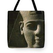 Detail Of Pharaoh Head At Entrance Tote Bag
