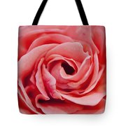 Detail Of Rose Flower Marrakech, Morocco Tote Bag
