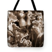 Details In The Dew Sepia Tote Bag