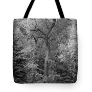 Determination 2 Monochrome Tote Bag