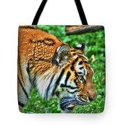 Determination In The Tigers Stare Tote Bag