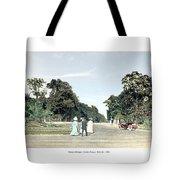 Detroit - Belle Isle Park - Central Avenue - 1905 Tote Bag