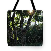 Devil Beating His Wife - Weather Phenomena Tote Bag