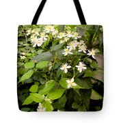 Devil Plant Tote Bag