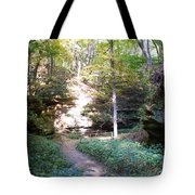 Devil's Punch Bowl Wildcat Den Tote Bag