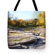 Devonian Fossil Gorge Coralville Lake Ia 3 Tote Bag