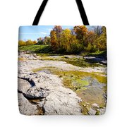 Devonian Fossil Gorge Coralville Lake Ia 1 Tote Bag