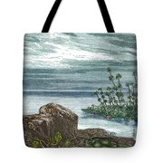 Devonian Period Tote Bag