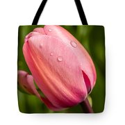 Dew Droplets On Pink Tote Bag
