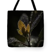 Dew Drops And Crystals Tote Bag