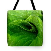 Dew Drops Tote Bag by Lisa Phillips