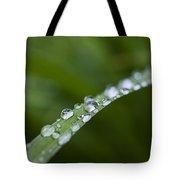Dew Drops On Green Leaf Tote Bag