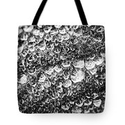 Dew Drops On Leaf Tote Bag