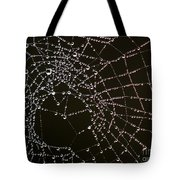 Dew Drops On Spider Web 4 Tote Bag
