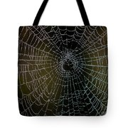 Dew Drops On Spider Web 5 Tote Bag