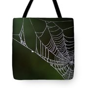 Dew In Early Morning Light Tote Bag