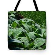 Dew Kissed Foliage Tote Bag