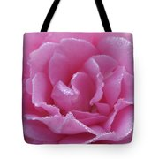 Dew Kissed Rose Tote Bag