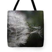 Dew On Dandelion Tote Bag