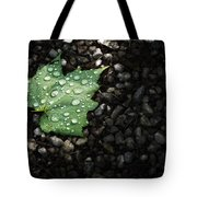 Dew On Leaf Tote Bag