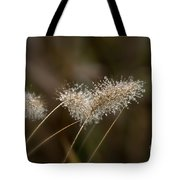 Dew On Ornamental Grass No. 2 Tote Bag