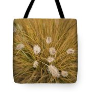 Dew On Ornamental Grass No. 3 Tote Bag