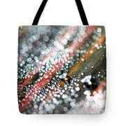 Dewdrops On Durban Tote Bag