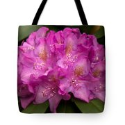 Dewy Rhododendron Tote Bag